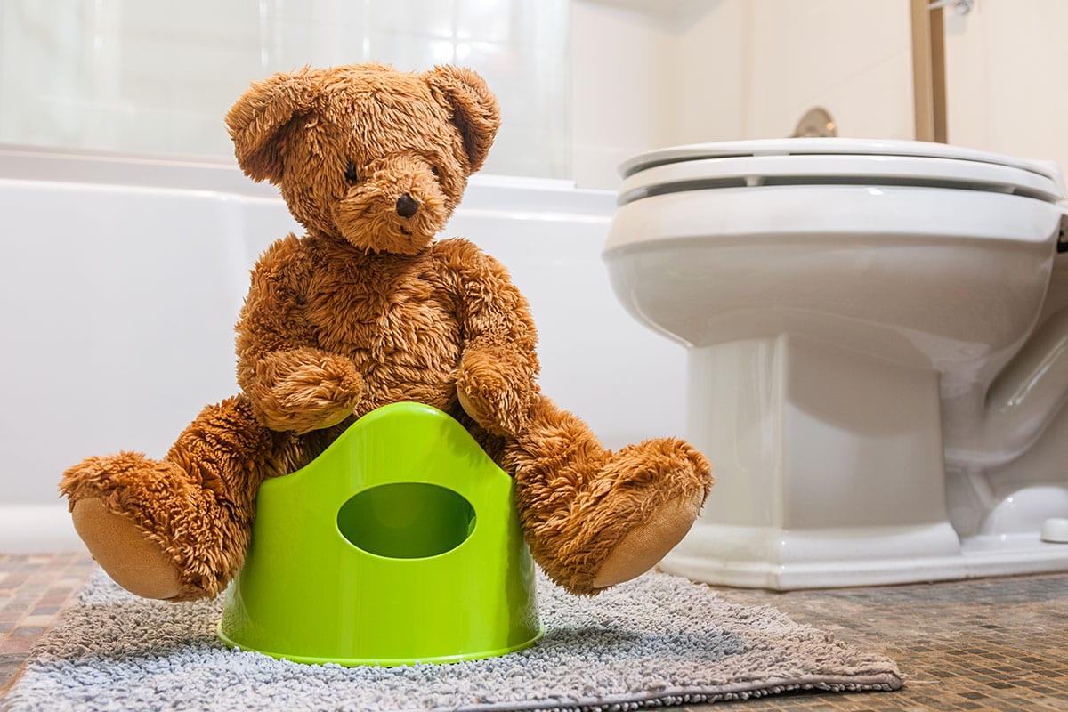 Teddy bear and green potty inside of domestic bathroom